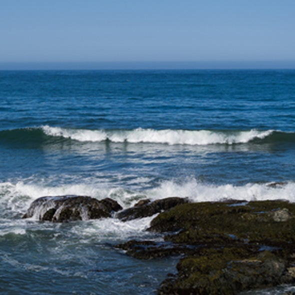 New X PRIZE to Help Track Increasing Ocean Acidity