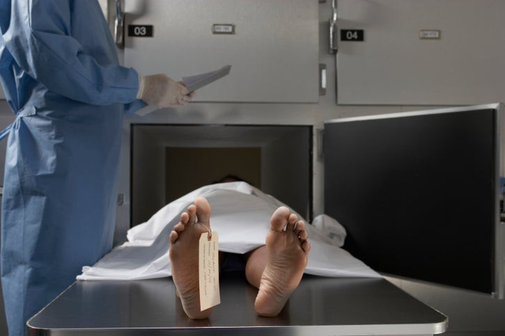 Changing Smell of Corpses Measures Time of Death
