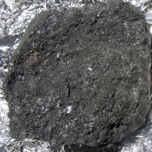 Rock Science: First Meteorites Recovered on Earth from an Asteroid Tracked in Space