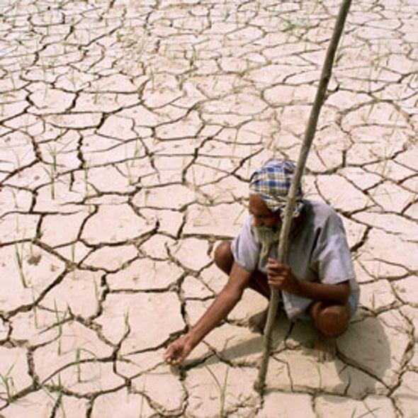 Arid Land, Thirsty Crops