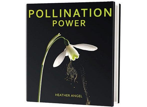 Book Review: <i>Pollination Power</i>