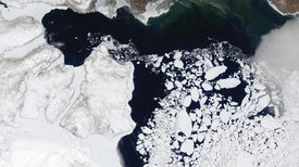Arctic Ambitions