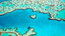 Australia Floats Plan to Better Protect Great Barrier Reef
