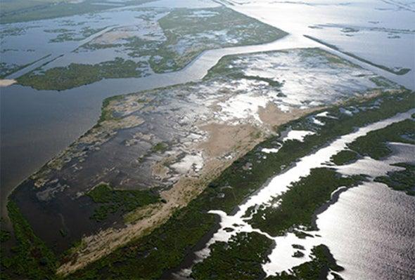 Louisiana's Moon Shot to Rescue Its Coast
