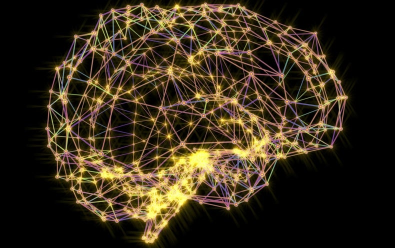 MIT Challenges <i>The New York Times</i> over Book on Famous Brain Patient