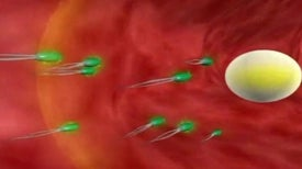 World's First Cancer-treating Nanorobot Developed in South Korea