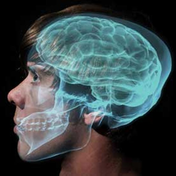 Brain Researchers Can Detect Who We Are Thinking About