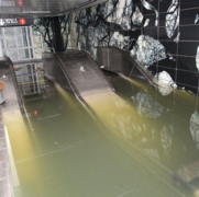 Post-Sandy NYC Subway Brims with Unknown Microbes