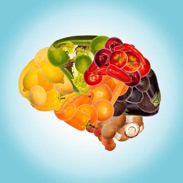 Sensation of Taste Is Built into Brain