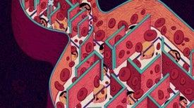 Nature Outlook: Haemophilia