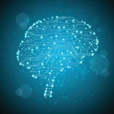 Human brain project scientific american book