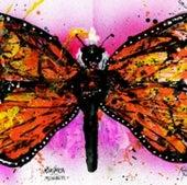 Monarch Butterfly: