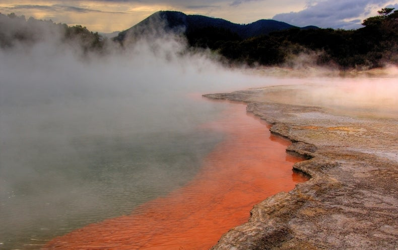 It Takes 2: RNA–DNA Mashup May Have Kick-Started Life on Earth