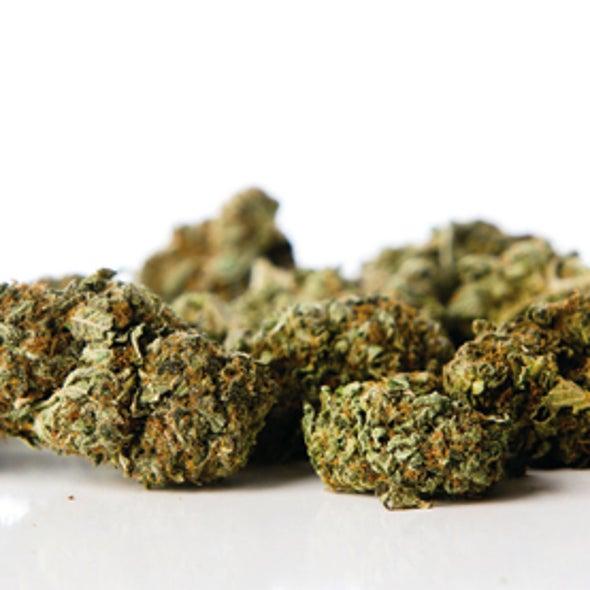 Record Numbers of Teens Think Marijuana Is Harmless