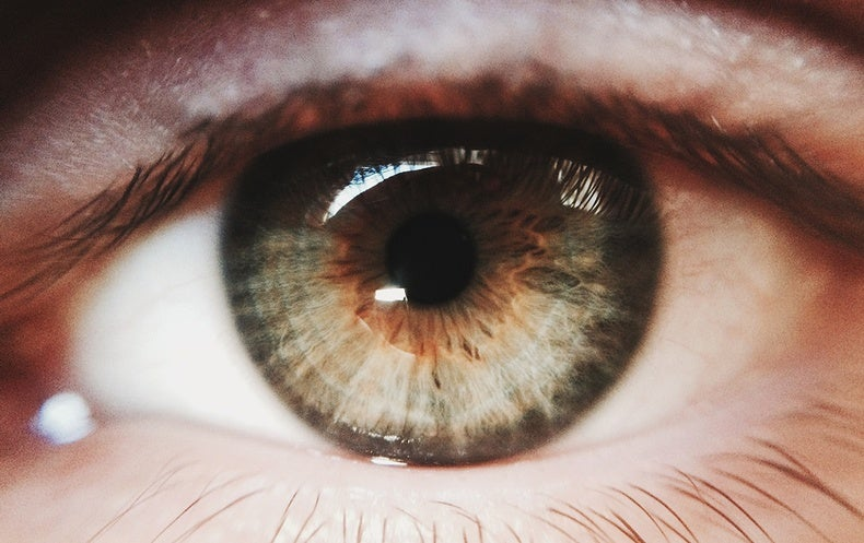 Gene Therapy for Blindness Appears Initially Effective ...
