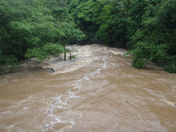 Rivers Can Resist Floods from Climate Change