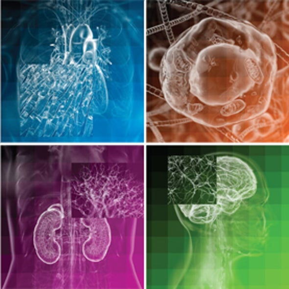 Future of Medicine: Advances in Regenerative Medicine Teach Body How to Rebuild Damaged Muscles, Tissues and Organs