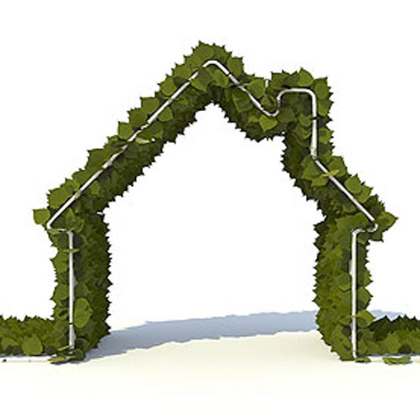 Home Green Home: Ecofriendly Materials and Resources Abound for House Renovations