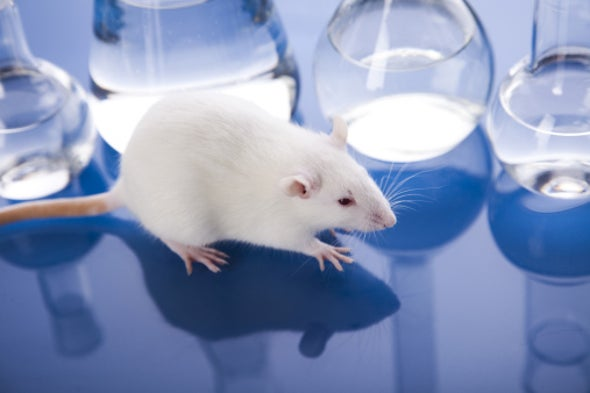 scientific experimentation on animals should be outlawed