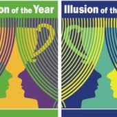 Illusion of the year