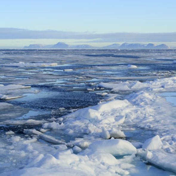The Earth Has More Than One North Pole