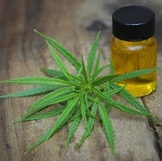 Marijuana Treatment Reduces Severe Epileptic Seizures
