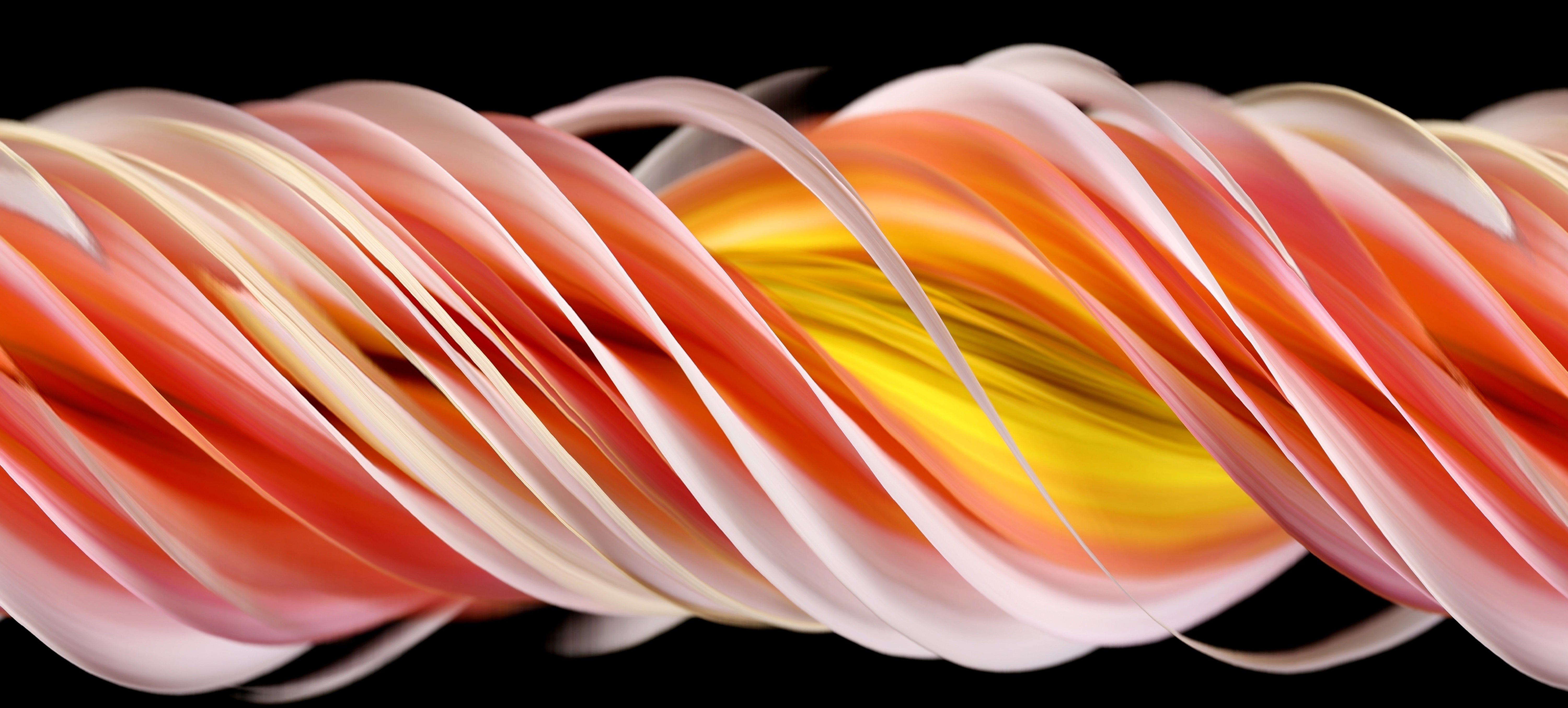 Slit-Scan Technique Presents a Twist on Flowery Photography