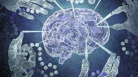 A Harder Look at Alzheimer's Causes and Treatments