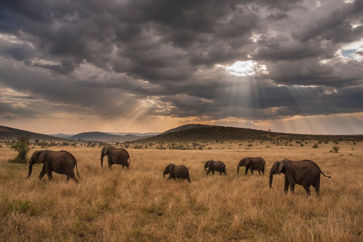The Best of Africa's Science, Scenery and Serenity