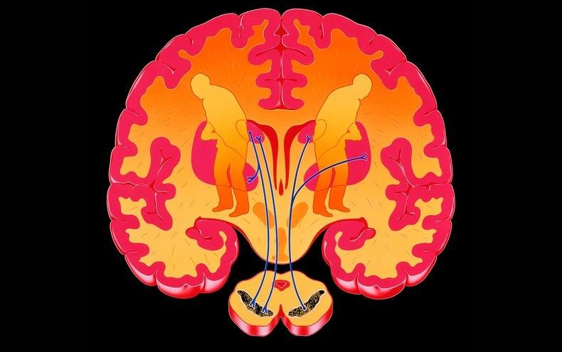 New Simpler Parkinson's Tests Probe Walking, Talking, Typing