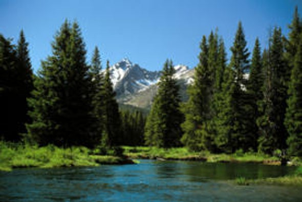 Land Locked: U.S. Wilderness Protection Act Benefits the Climate--Hunters Like It, Too