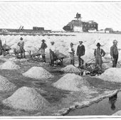 Labor and Salt: