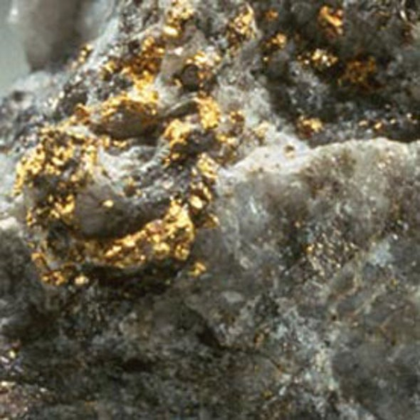 Earthquakes Make Gold Veins in an Instant