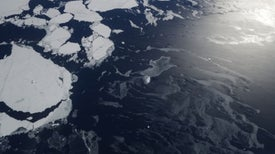 Antarctic Glaciers Lost Stunning Amount of Ground in Recent Years