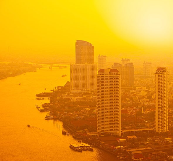 How Cities Can Beat the Heat
