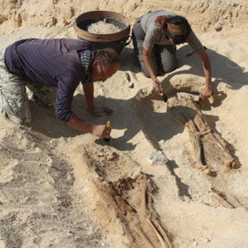 Amarna excavation