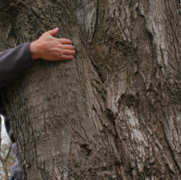 New GOP Leaders Embrace Science but Don't Hug Trees