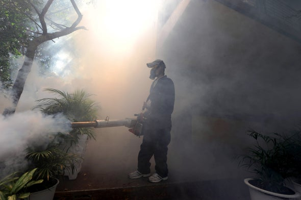 How Zika Spiraled Out of Control