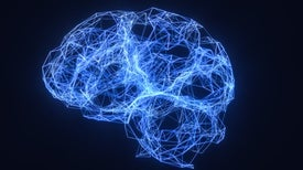 What is the function of the various brainwaves?