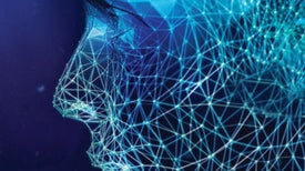 Human Cyborgs Reveal How We Learn