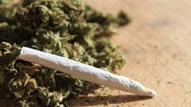 Marijuana Madness: Hopped-Up Weed May Pose Risks for Users