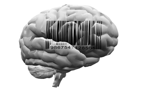 """""""Bar Codes"""" Could Trace Errant Brain Wiring in Autism and Schizophrenia"""