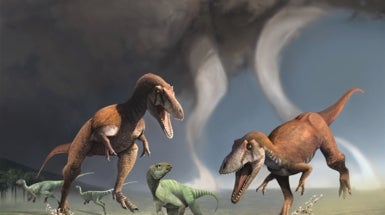 New Dinosaur Had the <i>T. rex</i> Look: Tiny Arms