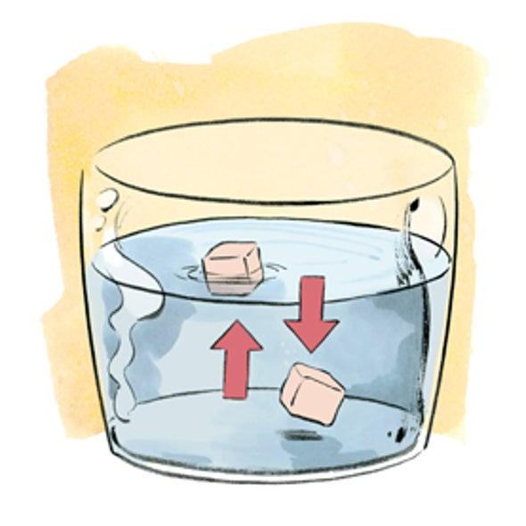Sink or Swim: Muscle versus Fat