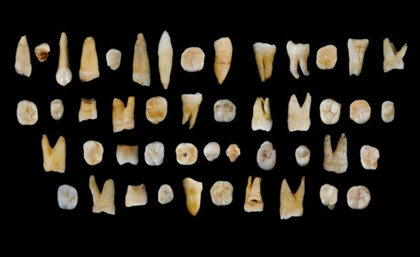 Teeth from China Reveal an Early Human Trek out of Africa