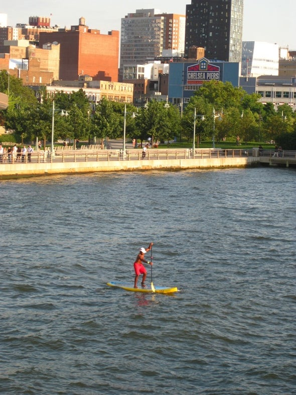 City View: Paddle Surfers Enjoy New York's Waterways