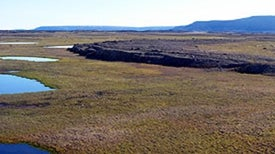 Tundra Lakes Drying at Rate Unprecedented in 200 Years