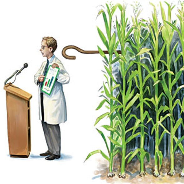 Do Seed Companies Control GM Crop Research?
