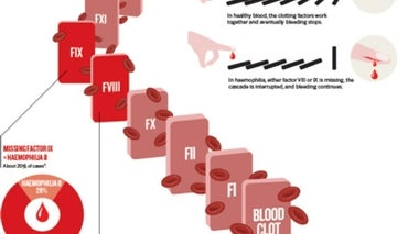 A Primer on Haemophilia (Graphic)