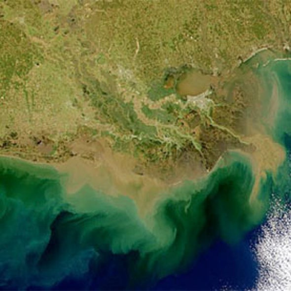 Dead Zone Pollutant Grows Despite Decades of Work
